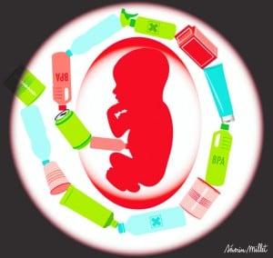 babycook-bisphenol-a